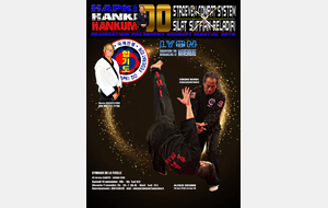 Stage exceptionnel d'Hapkido le weekend du 16 au17 nov 2019 à Lyon