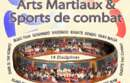 Stage multi arts martiaux annecy